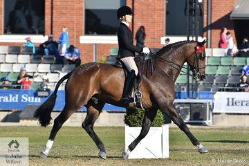 Successful showing rider and trainer, Adam Oliver won the class for Gentleman Rider Over 30 and went on to be declared 2018 Royal Melbourne Show Champion Gentleman Rider.