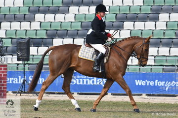 Representing the Oaklands Hunt Club, Heleni Goodman rode Kevin Maher's, 'Yarra Munda Ruby' to take second place in the class for Heavyweight Hunter Shown In Saddle.