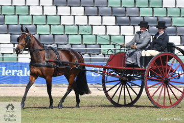 Michelle Wright drove her own, 'Ithappensinvegas' to third place in the class for Standardbred Turnout.