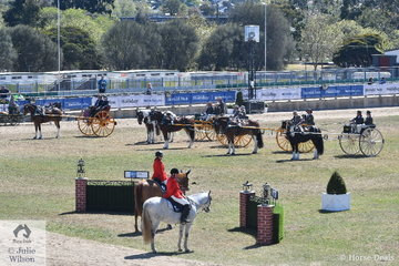 The last two days of the 2018 Royal Melbourne Show are given over to the Harness and Hunting competitions. There were some outstanding entries and this class for Long Shaft Brake was particularly strong.
