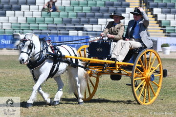 Ellen Patterson drove Corinne Collins', 'Milbrae Magestic' to take second place in the class for , Light Delivery Not Over 14hh  Driven In A Traditional Vehicle.