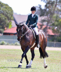 """Angela Latter and """"Skyview Trilogy"""" were class winners in the Show Hunter Hack ring."""