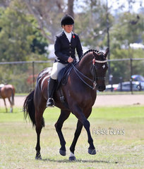 "Champion Large Hack ""Black Pearl"" and LeeAnn Olsen."