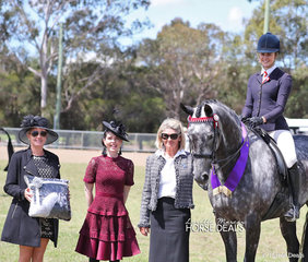 """Winner of the Supreme Show Horse """"Set In Diamonds"""" ridden by Courtney Cremasco, with judges Amanda Callaghan, Erin Ketteringham and Dianne WHite. Set In Diamonds is owned by Toni Ambrose."""