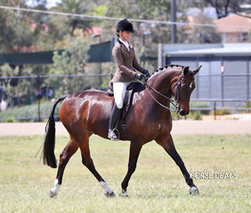 Champion Adult Rider and Supreme Champion Rider of the Show - Courtney Larard.