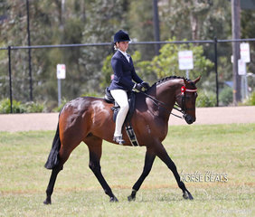 Ella Bourke was the Champion Senior Child Rider .