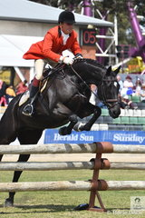 Darren Green rode , 'Gravitas' for the Oaklands Hunt Club to win the SA Greaves Memorial Hunter's Plate and take second place in the Noel Mason Memorial Hunter's Plate and was declared Champion Hunter on the final day of the 2018 Royal Melbourne Show.