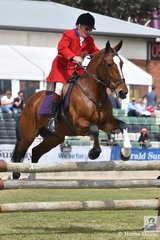 Ray Franklin, one of the senior members of the Murray Valley Hunt Club is pictured aboard, his, 'Delatite' during the Noel Mason Memorial Hunter's Plate.