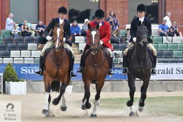 The Murray Valley Hunt Club Team of, Ray Franklin aboard, 'Delatite', Wendy Buller riding, 'TC Bobbie' and Alexandra Ferguson with , 'Downton Abbey' won the Peter Ronald Memorial Hunt Clun Teams Jumping Contest.