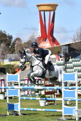 "If front of the famous Royal Melbourne Show ""Pie in the Sky"", Tori Stuckey jumps a nice fence on her way to a clear first round abroad Belcam HB in the Group C."