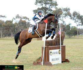 Tahlia Coleiro represents New South Wales in the EvA105 on her horse Hillcrest All About Marvin at the 2018 Marcus Oldham Interschool National Championships..