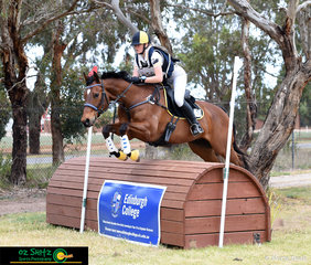 Even out on cross country Kate Smith's Star of Kingston makes it look easy in the EvA105 class at the Marcus Oldham interschool National Championships.