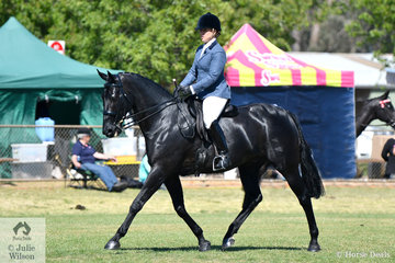 """Kathleen and """"Buck"""" won the Ridden Gelding class and went on to be declared Champion ridden Standardbred."""