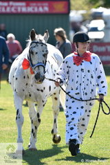 Breeanna Lindell and 'Leo' had matching outfits for the Fancy Dress class in the Fun Ring. They has already claimed the class for Best Handler Over 12 Years.