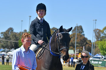 Daniel Weidenbach won the Ring 2 class for Heavyweight Hack and is pictured with judge, Rebecca Maddocks and steward, Alex Jenkins.