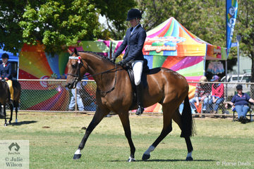 Well known and successful showing exhibitor, Samantha McMaster rode her new horse, 'Caribbean' to win the Ring 2 class for Lightweight Hack.
