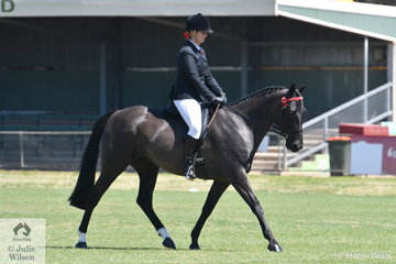 Stacey Butcher is pictured aboard her, 'Sparkarama' that took second place in the class for Ridden Standardbred Gelding.