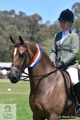 Well known and successful showing identity, Sarah McCormick rode her daughter Claudia's, 'Salisbury Masterpiece' to claim the Ring 1 Show Hunter Galloway Championship.