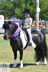 Syenna Wright is pictured aboard Lee Purchase's splendid, 'Korawyn Show N Tell' that was declared Ring 2 Reserve Champion Small Pony.
