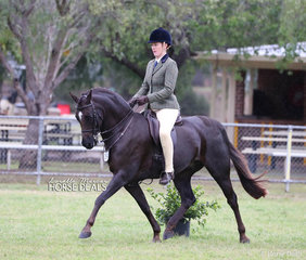 """The Treneman & Duncan Families """"Owendale Rembrandt"""" was ridden by Kate Treneman-Duncan to take Runner Up in The TABLELANDS SHOW HORSE & PONY ASSOCIATION INC. Large Show Hunter Pony of the Year event."""