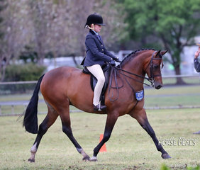 Top 10 placegetter in The SYDNEY REGIONAL HACK EXHIBITORS ASSOCIATION Rider 9 & under 12 years - Ava Peel from Merriwa.
