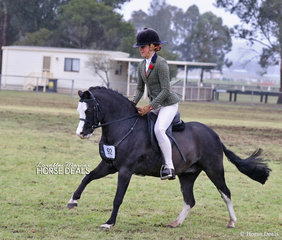"""Working out in The CBC CONSTRUCTIONS Small Show Hunter Pony of the Year event """"Bamborough Snigger"""", exhibited by Vanessa Galloway-Smith of Gul-gong."""