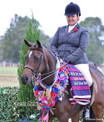 "The AGNES BANKS EQUINE CLINIC Champion Small Show Hunter Galloway ""Baringa Georgina"" and Krystle McInnes."