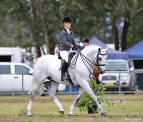 """Runner Up in The BERLE FAMILY Large Show Hunter Galloway of the Year event - """"Wadbilliga Major Impact"""" exhibited by Stratford Horses ridden by Chloe Stratford."""