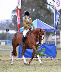 """Hannah Cross and """"Kirreway Hickstead""""  working out in The WALFAM INVESTMENTS Small Show Hunter Hack of the Year event."""