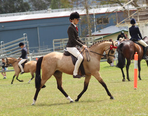 Langtree Del Esprit exhibited by Charlee Anthony winner of the Novice Pony