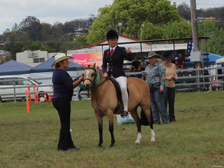 Reserve Champion Hunter Pony Bauman Park Buttons And Bows and Lizzy Maroney