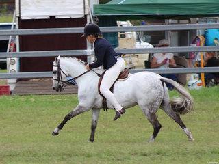 winner of the Hunter Pony exhibited by Tegan Maluta