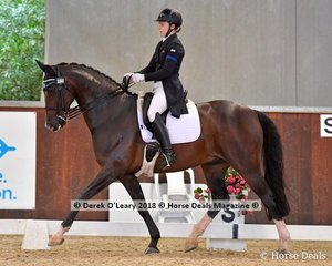Dicavalli Dandy ridden by Sabrina Hitch in the FEI Junior Individual CDI-J scoring 63.383%