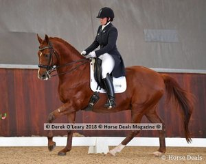 Remi Legenderry.ridden by Madison Layfield placed 2nd in the FEI Young Rider Individual test with a score of 65.343%