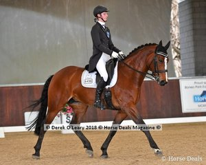 Quizzical ridden by Tanisha Ryan placed 3rd in the FEI Young Rider Individual CDI-Y with a score of 65.196%
