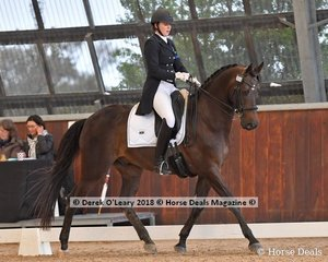 Tallyho Something Saintly ridden by Sienna Hawkins in the FEI Young Rider Individual CDI-Y scoring 62.157%