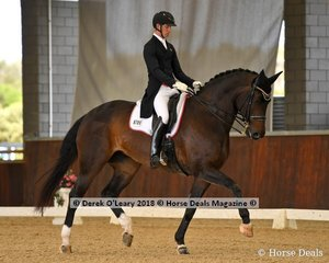 Furstin Friendship ridden by Riley Alexander in the FEI Intermediate Freestyle