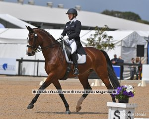 Adonie ridden by Rozzie Ryan in the FEI Grand Prix Freestyle CDI-W