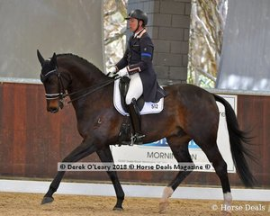 Larapinta Showstar ridden by Lizzie Wilson Fellows in the Advanced Freestyle