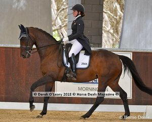Dolcima ridden by Clair Arnold in the Advnaced Freestyle placed 5th with a score of 70.350%