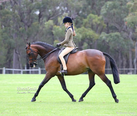 """Anneliese Hughes and """"Corndale Kiss And Tell"""" were class winners in the Show Hunter Galloway ring."""