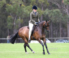 """""""Pocket Watch"""" was ridden by Alexandra Jones for owner Toni Ambrose to win Champion Large Show Hunter Pony."""
