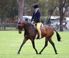 """Photographed during their workout in the Ridden Saddle Pony Mare/Filly 12.2 - 13.2hh class in which they placed 2nd - Erin Montford and """"Uhavta Lemaire""""."""