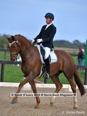 Yarramee Serendipity ridden by David Shoobridge in the Medium 4.3 placed 3rd with a score of 67.973%