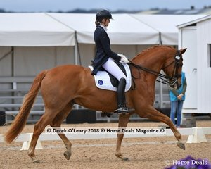 Bluefields Furstentanz ridden by Alicia Ryan in the FEI Prix St George Stars of the Future scoring 66.647%