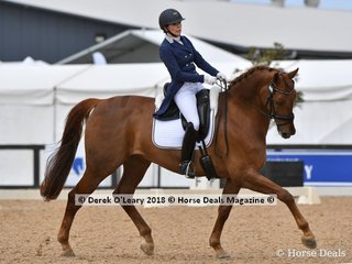Sugarloaf Rubinell ridden by Hayley Gilbert in the FEI Prix St George Stars of the Future scoring 67.559%