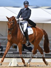 Derreen Rock N Rolla ridden by Harvey Besley in the FEI Prix St George Stars of the Future scoring 68.029% placing 5th