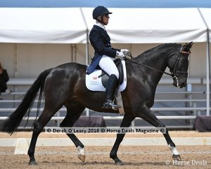 Jaybee Albion ridden by Caroline Coleby in the FEI Prix St Georges Stars of the Future scored 60.529%