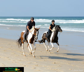 A father and daughter beach ride, Roger (on Astina FP) and Nicky Meredith (on Xmas Eve)  take the chance to go for a canter along the beach.
