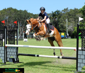 Kayla Johnston and her 8 year old Paint Quarter Horse gelding clear the oxer to take out first place in the 80cm class on Saturday at Cabarita Beach.
